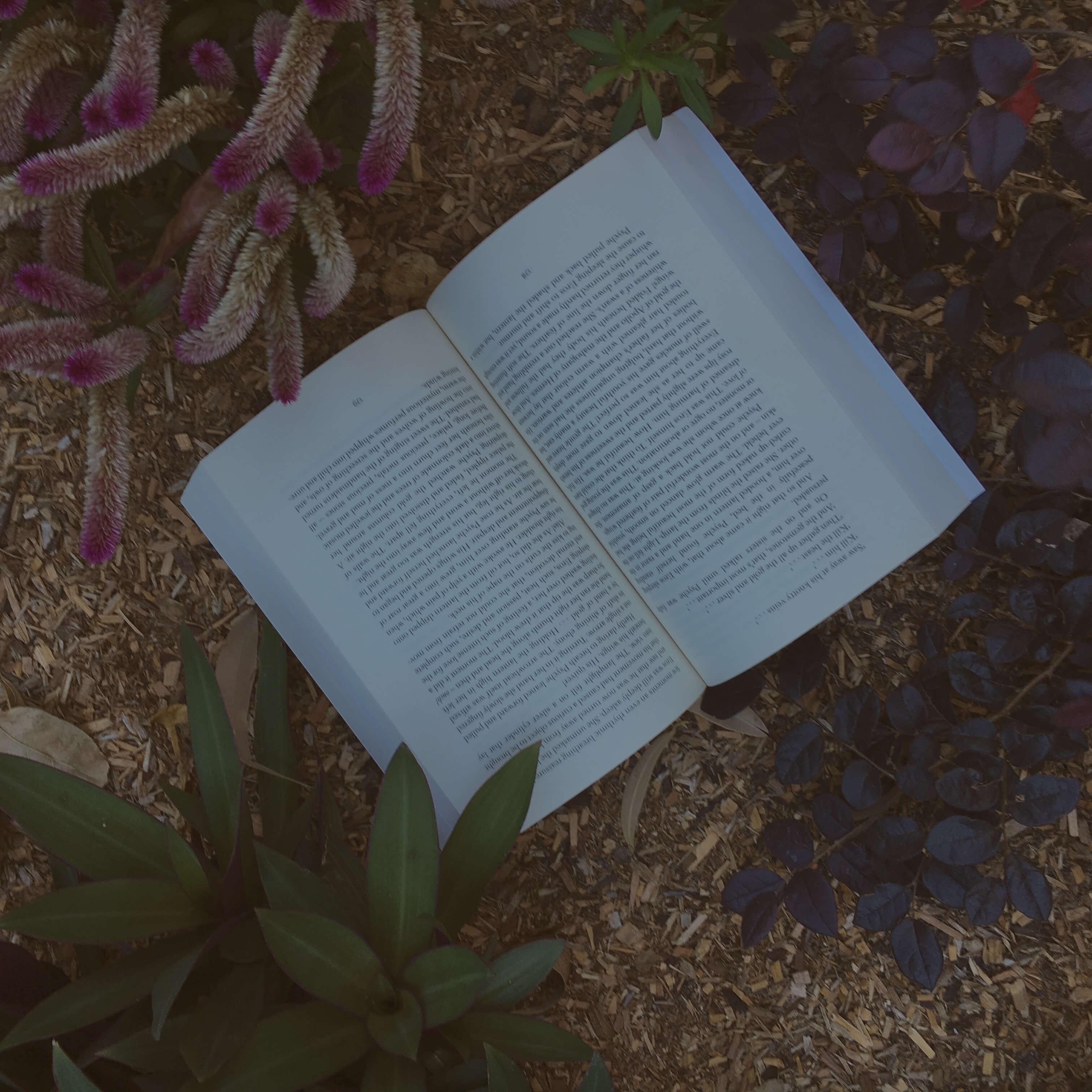 3 ways to start writing copy 2